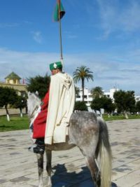 Palace Guard Rabat Morocco