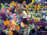 CSA Flower Pickup