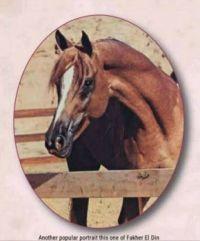 Fakher El Din (1960-1987)