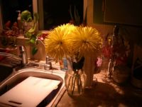 Flowers & Dirty Dishes . .. the bliss of marriage. <3