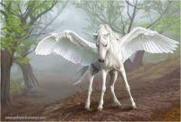 Pegasus (Med.-Large)
