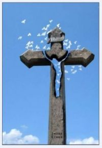 Kříž_Cross