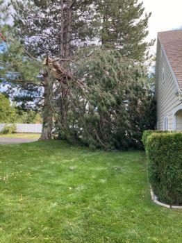 Hurricane Winds in Utah