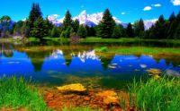 Amazing Landscapes (22)