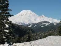 Mt. Rainier view