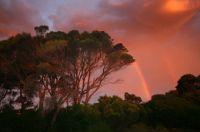 Sunset in my front yard: King Island, Tasmania