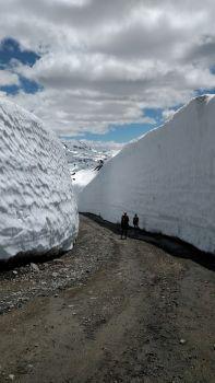 Whistler snow bank, late June