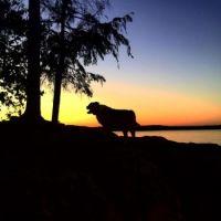 Wellesley Island Sunset