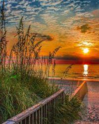 Summer Rise by Tyler Peedin