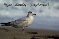 Happy Birthday (ladycharnley)!