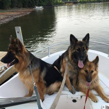 Three on a boat