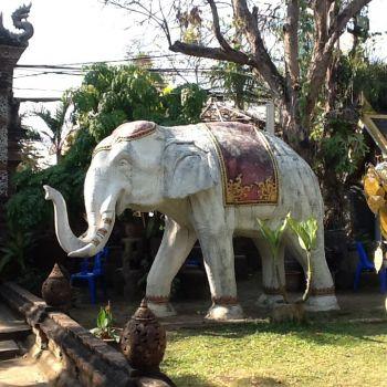 Temple garden Chiang Mai