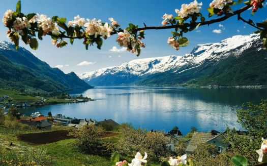 hardangerfjord-norway-mountains-landscapes-nature-land-1050x1680