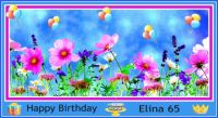 Happy Birthday Elina 65  :)