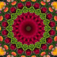 kaleidoscope 355 pink and green medium