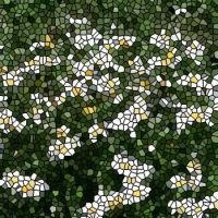 Daisies in Grass small