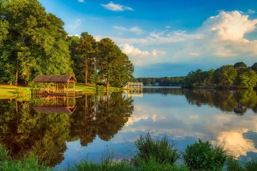 Bunn Lake - North Carolina, USA