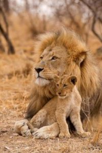 Proud Daddy with son!  very cute