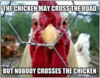 Nobody Crosses the Chicken!