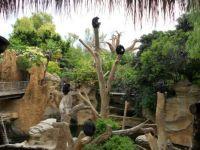 Fuengirola zoo, Spain