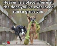 Heaven is a place....