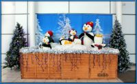 Penguin Christmas Display