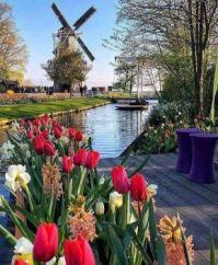 A flower park in Lisse, Netherlands celebrating Spring