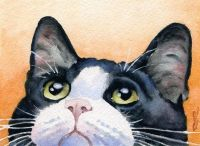 Tuxedo Cat by Artist DJ Rogers