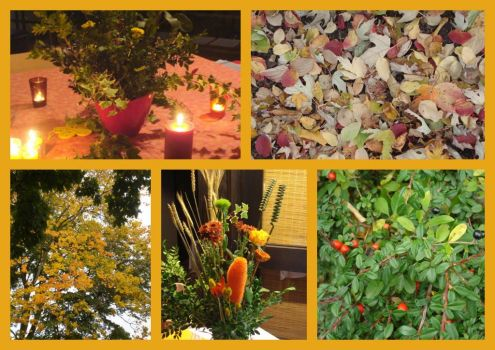 I love the autumn