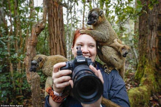 3 ~ 'Take a Picture not a Trophy'  (Lemurs)