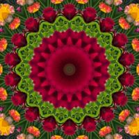 kaleidoscope 355 pink and green large