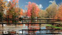 North Carolina Fall Idyll