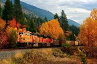 Rails in Fall