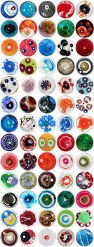 Colorful Petri Dishes