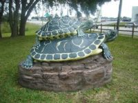Cotter Turtle Statue