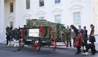 19 foot Fraser fir arrived at WHITE HOUSE