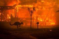Fires in Australia