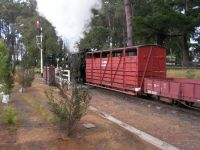 Puffing Billy mixed train