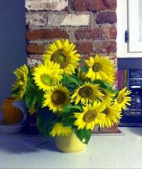 sunflower vase cropped