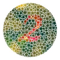 Are you color blind?