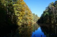 Lake (Fall) - Small