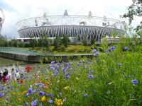 olympic stadium daytime