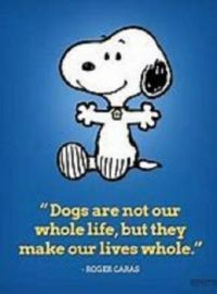 Dogs....