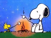 WOODSTOCK AND SNOOPY-CAMPING