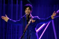 Prince in purple 2