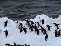 antarctica 2 - dec 14, 2019