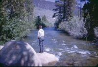1962-80 Robinson Creek