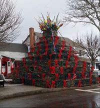 Lobster trap Christmas tree P'town