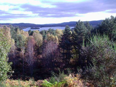 Loch Kinord, near Aboyne, Aberdeenshire, Scotland