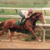 """race horse """"Rainbow Bard"""" as 3yr now he is 30 years old now"""